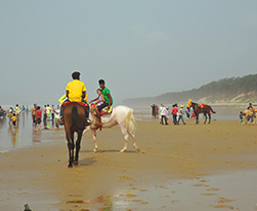 Area to Visit- Digha