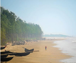 Area to Visit- Tajpur